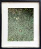 "Franck Scurti ""Rain Bird"" 2017 — framed"