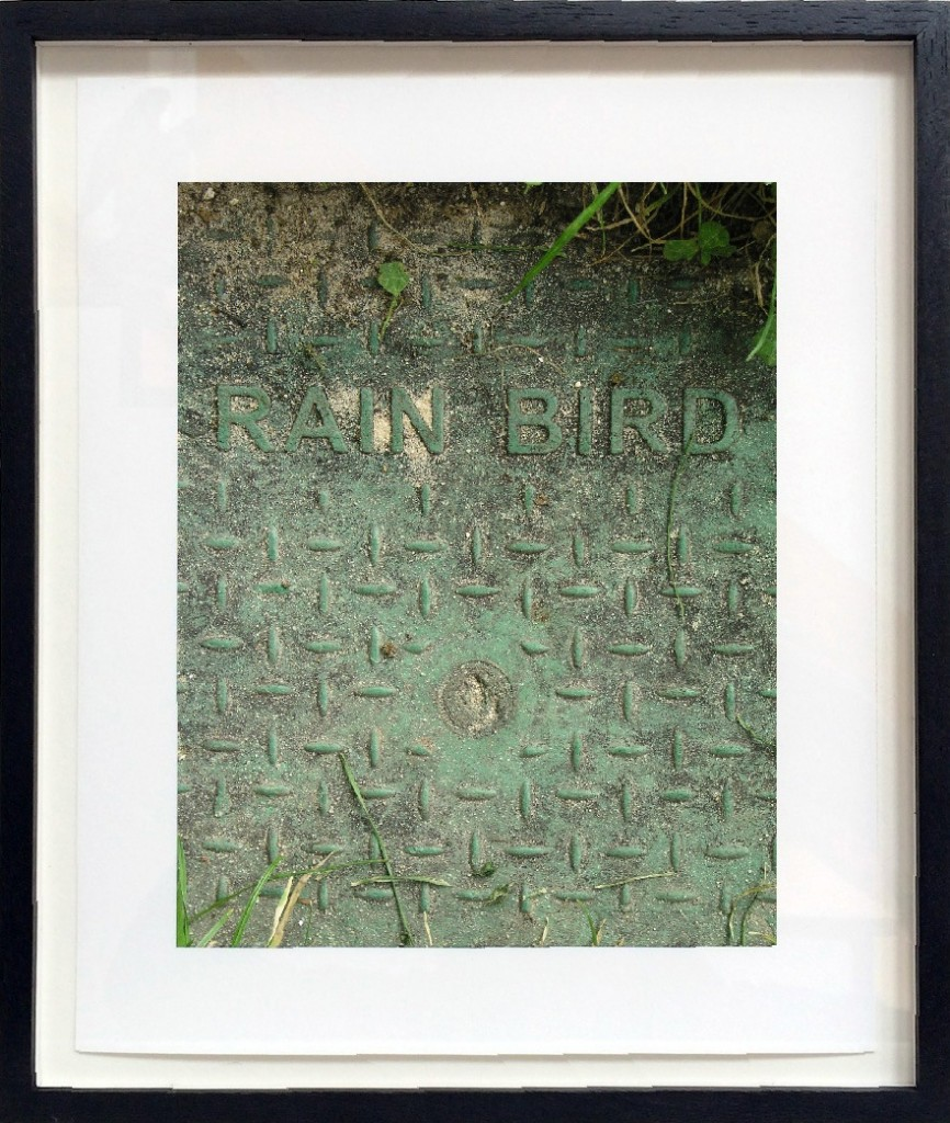 "Franck Scurti ""Rain Bird"" 2017 — framed"