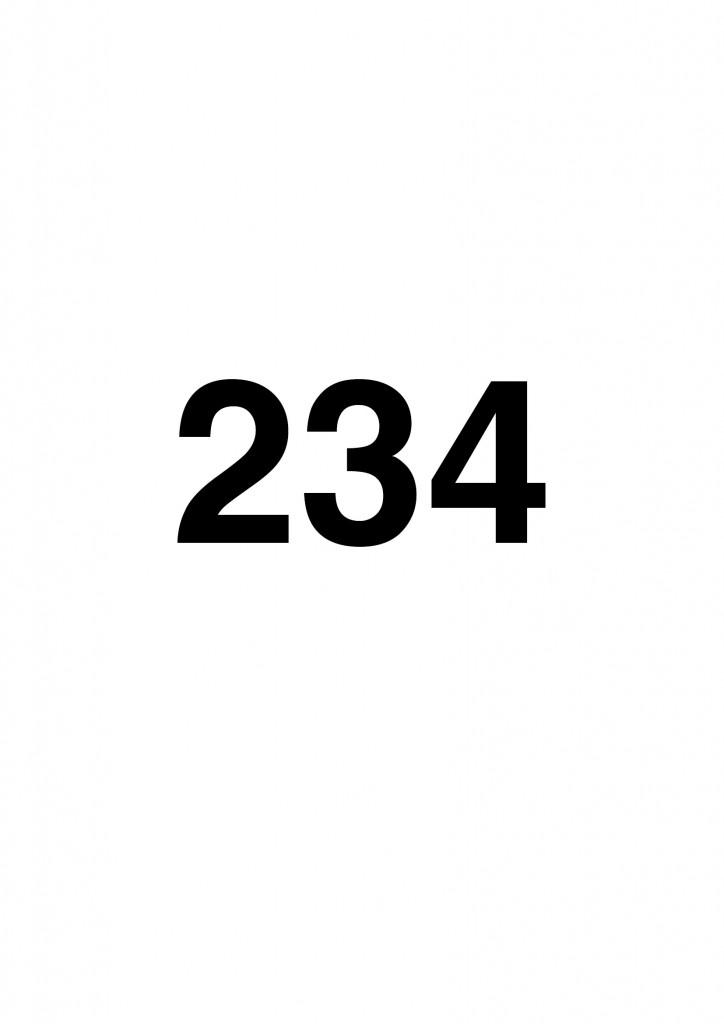 """Jef Geys, """"234"""""""
